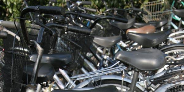 Mehr über unseren Fahrradverleih